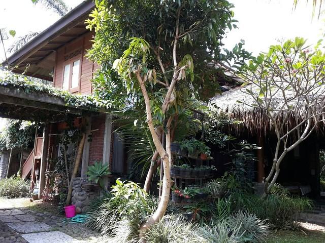 Di Jual Rumah Kayu Cantik 1,6M di Gegerkalong, Bandung Utara (1)