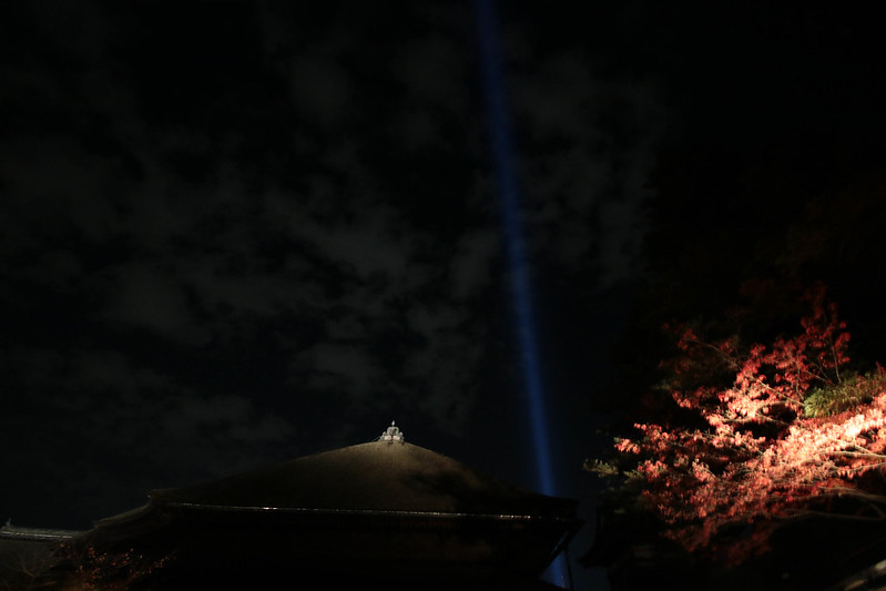 20141122-武奈ヶ岳&京都ライトアップ-0794.jpg