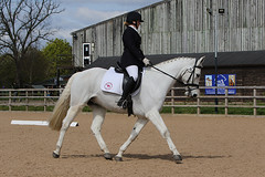 BCA Unaffiliated Dressage Championships - 24_04_2016