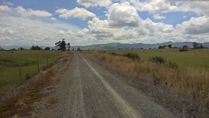 Toward Paeroa