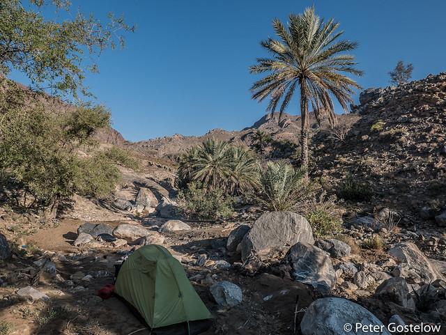 Wadi camp