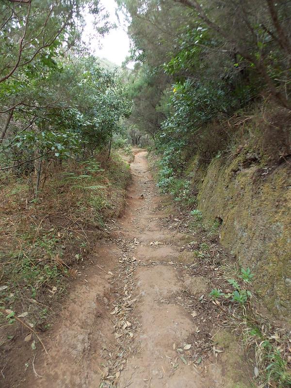 Anaga Hiking (80)