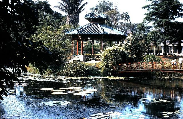 SAIGON 1966-70 by Jim 'Jimbo' McKinlay - Thảo Cầm Viên
