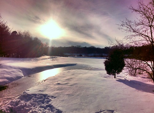 Snowy Marsh #throughglass