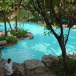 Swimming Pool to relax