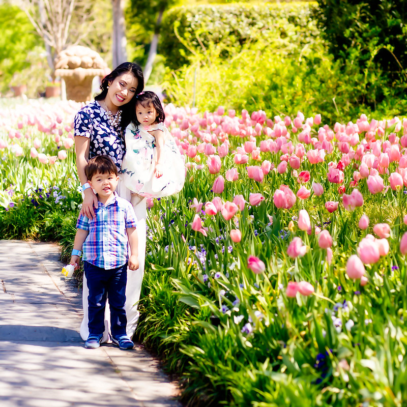cute & little blog | petite fashion lifestyle | dallas tulip fields