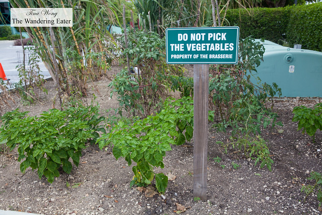 """Do not pick the vegetables"""
