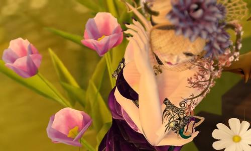 Bright Haven: Blossoms