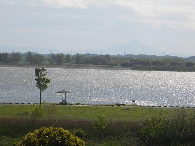 2016年 4月29日 渡良瀬遊水地今日の走り