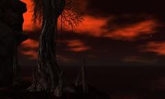 Twilight Illusion: Red Sun at Night