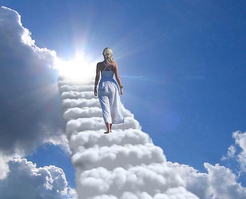 Життя смерть драбина небо рай