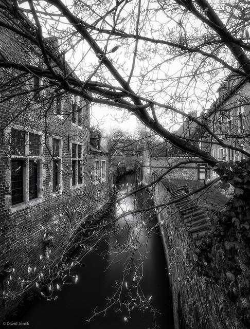 Groot Begijnhof Leuven - Ready for Spring