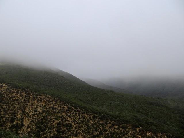 sunday morning fog