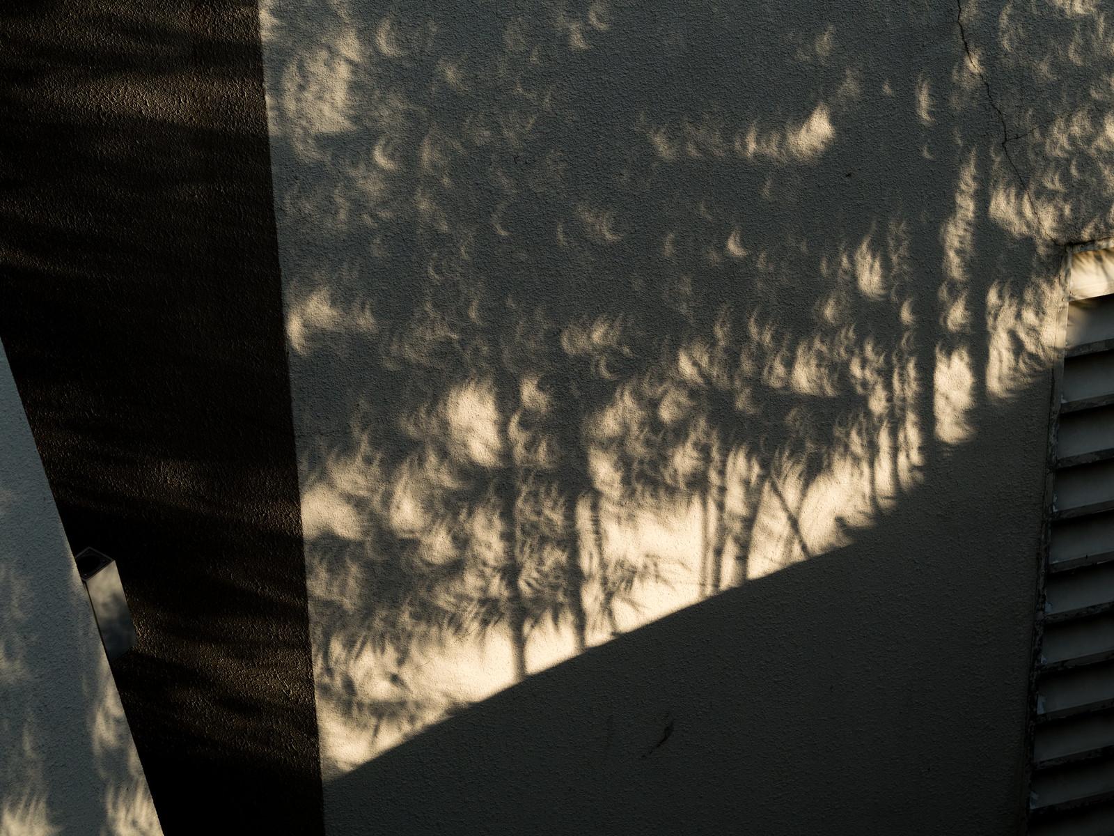 Bayang-bayang dedaun berbentuk bulan sabit