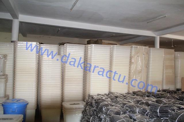 IMG_6387-dakaractu