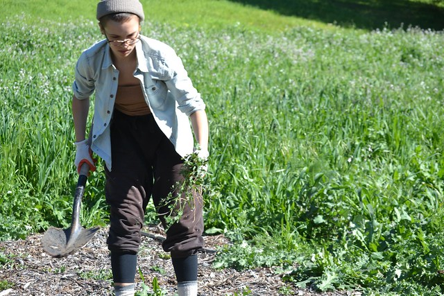 Breaking Ground on Mills' Urban Farm