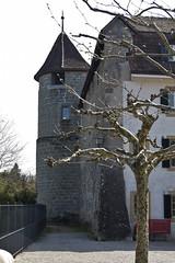 Murten Platz bei Franz. Kirche