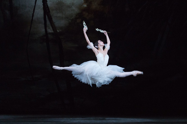Akane Takada in Giselle © ROH 2016. Photograph by Andrej Uspenski