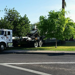 dumpster rental phoenix arizona 17