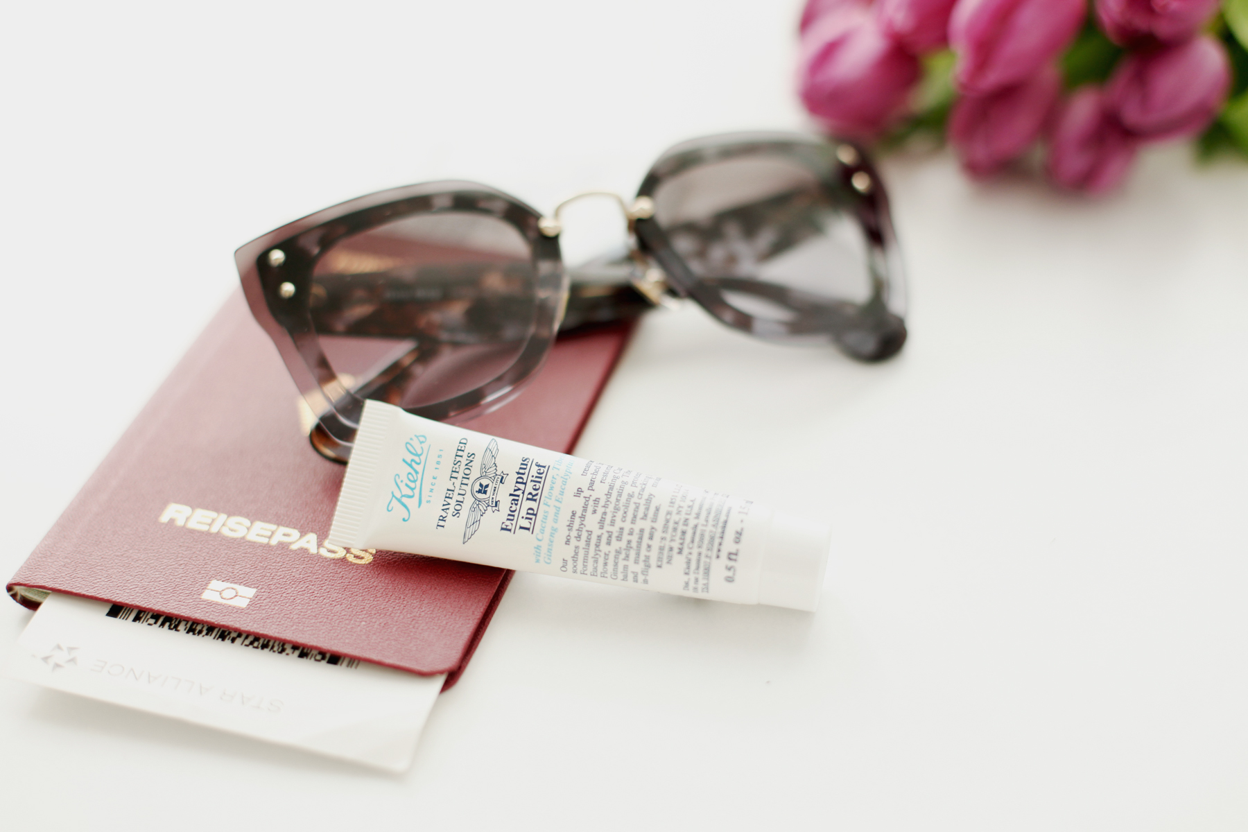 kiehl's travel essentials reise new york city world of kiehl's travelling miniature beauty beautyblogger handgepäck hand luggage sunglasses miu miu beauty tipps und tricks daily revival cats & dogs ricarda schernus beautyblogger düsseldorf 4