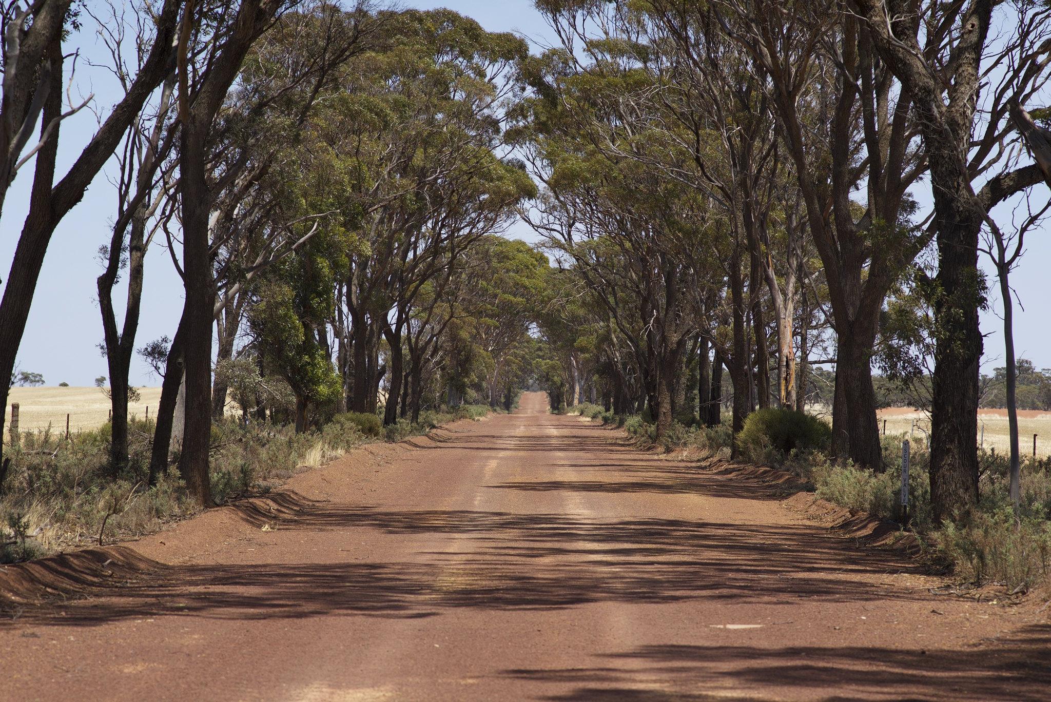 Nambadilling Road
