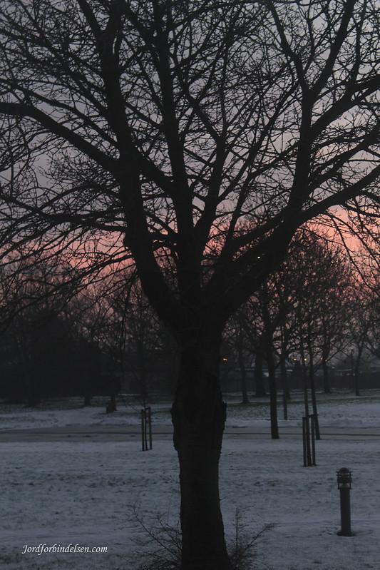 090116 Sunrise