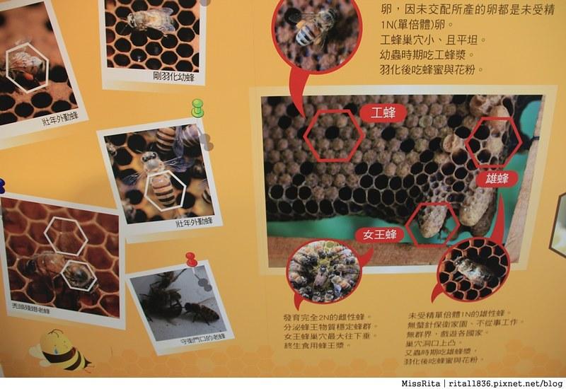 花蓮好吃 花蓮好玩 花蓮鳳林 家咖哩 蜂之鄉 家咖哩Jiacurry 蜂之鄉鳳林蜜蜂生態教育館  花蓮生態旅遊景點 花蓮室內 家咖哩鳳林28