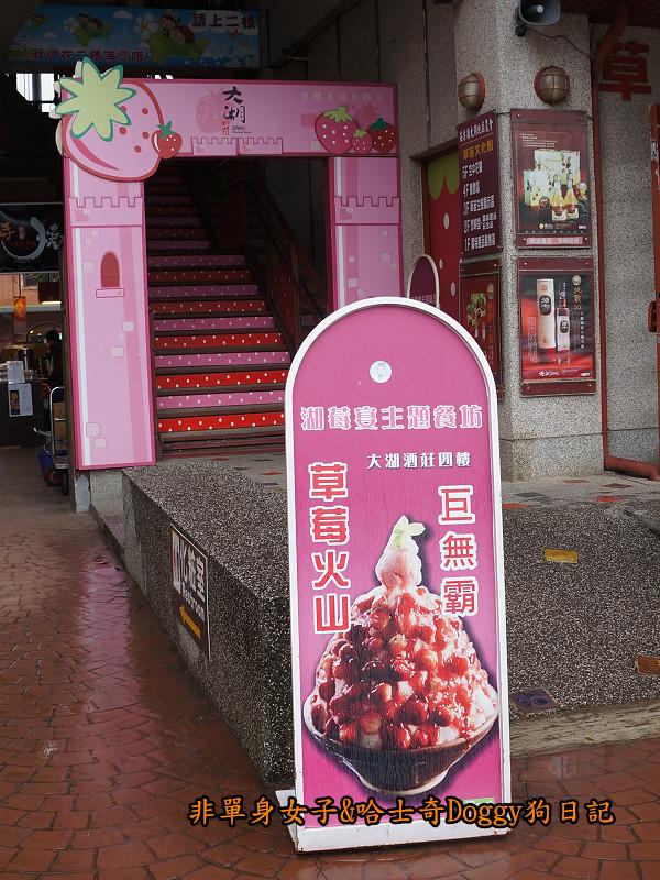 苗栗草莓大湖酒莊清安洗水坑豆腐街13