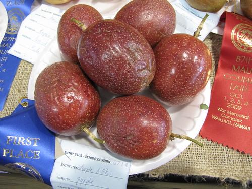 starr-091003-7378-Passiflora_edulis-purple_fruit-Maui_County_Fair_Kahului-Maui