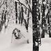 Cody Townsend skiing powder in Hakuba, Japan. Photographed in January 2012., foto: archiv autorky