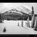 Winter wonderland along highway 742 / Smith-Dorrien Trail, Kananaskis Country, Alberta by kgogrady