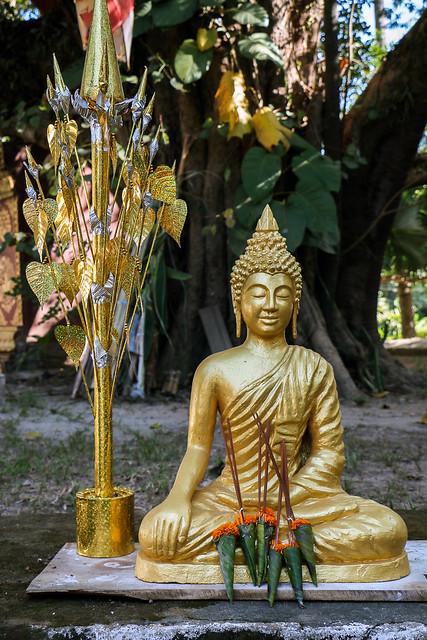 Golden Buddha statue in Wat Visounarath, Luang Prabang, Laos ルアンパバーン、ワット・ビスンナラートの仏像