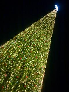KLCC Suria Christmas Tree