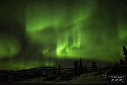Lights Over Yukon