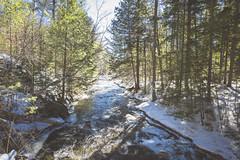 Downstream of Smalls Falls Maine