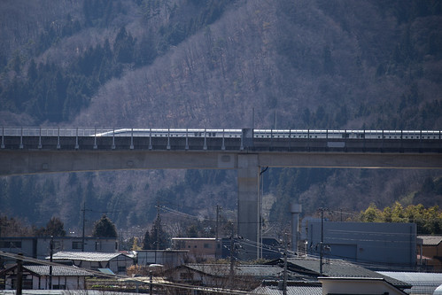 running Superconducting Maglev train (1)
