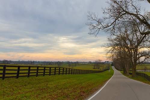Landscape near Woodford Reserve Distillery in Versailles, KY