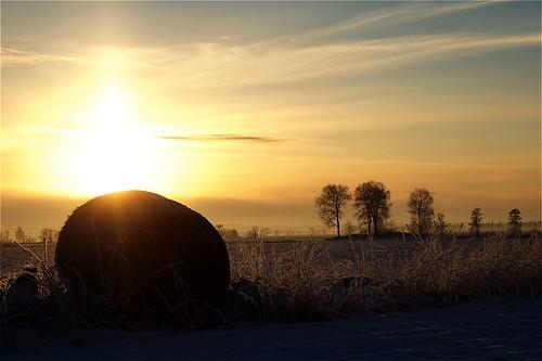 winter vinter sweden sverige håkan solnedgång d700 jylhä