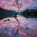 Llyn Padarn by John Ormerod