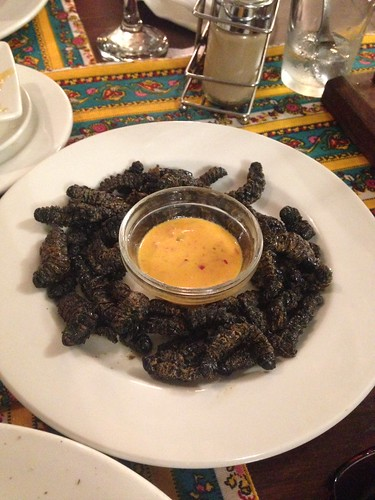 Zimbabwe's favourite snack, deep fried Mopane Worms 'Macimbi'