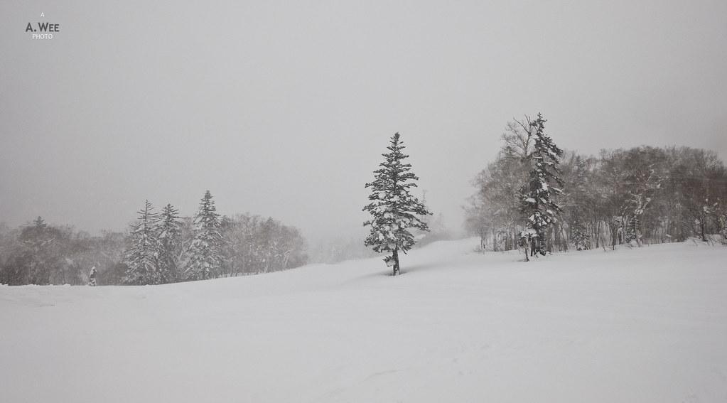 Winter at Kiroro