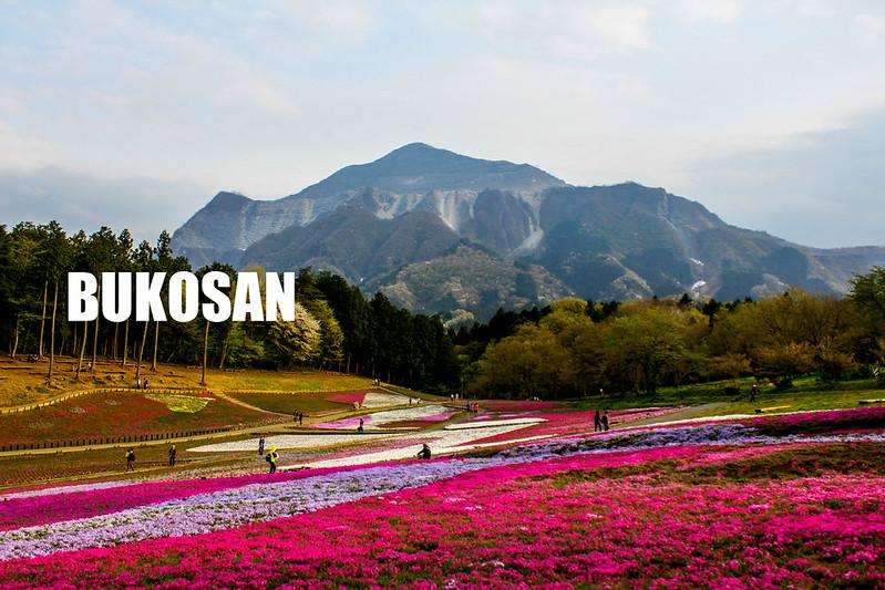 2014-04-19_00543_美の山-Edit.jpg