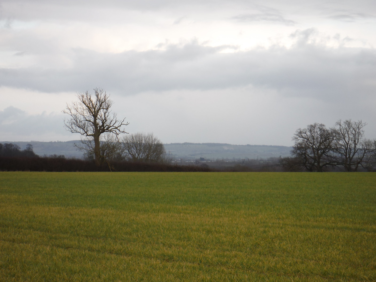 Chiltern Views from Acorn Farm SWC Walk Cheddington to Leighton Buzzard