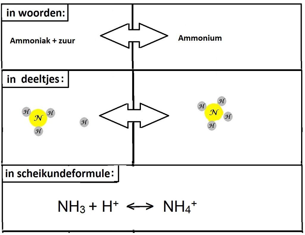 Ammoniak ammonium (1)