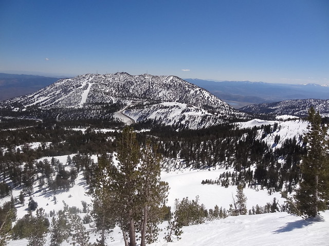 Mt. Rose Ski Area from Tamarack Peak
