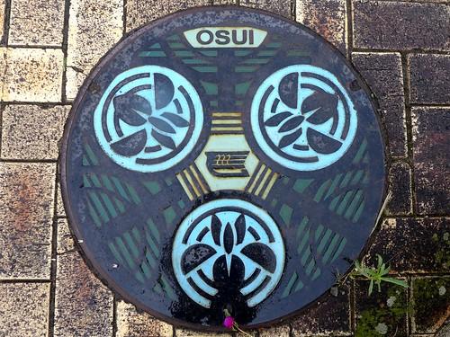 Izunagaoka shizuoka, manhole cover (静岡県伊豆長岡町のマンホール)