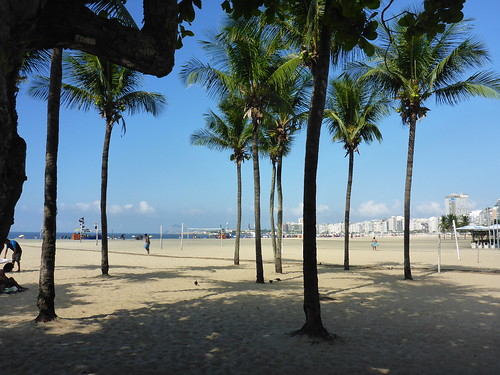 Palms at Copacabana
