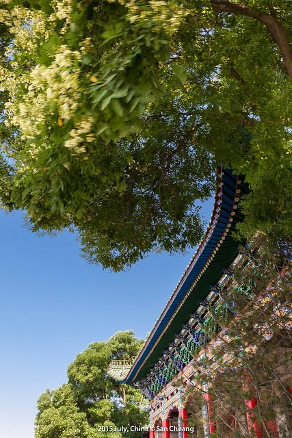 白塔山公園