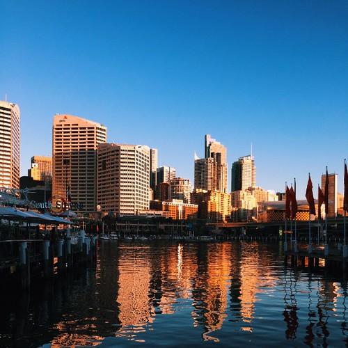 #Happy #Friday from #sunny #Sydney