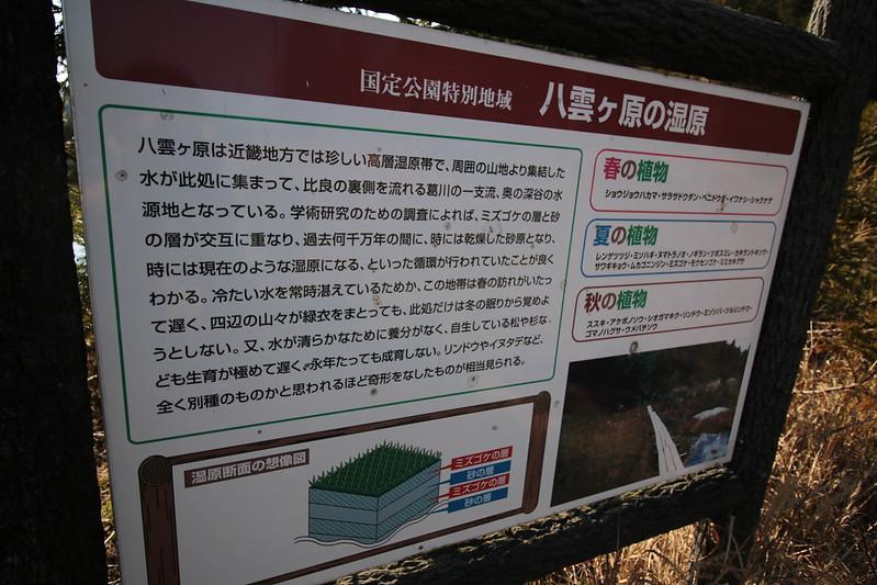 20141122-武奈ヶ岳&京都ライトアップ-0406.jpg